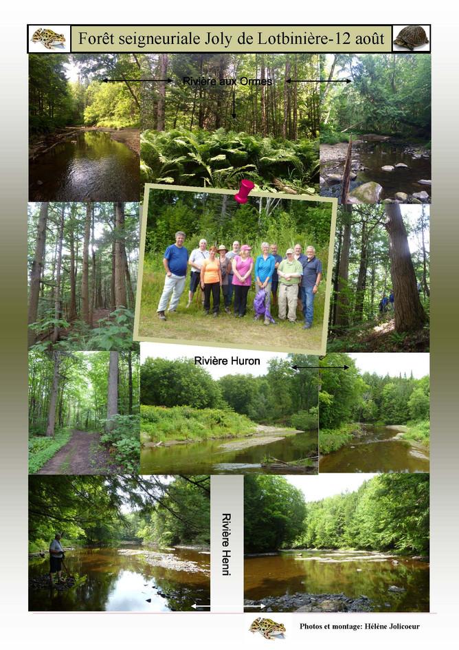 Forêt_seigneuriale_Joly-photos_excursion