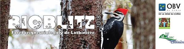 bioblitz_bandeau_oiseaux.png