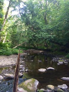 Rivière-Aux-Ormes (2).jpg