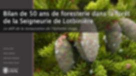 4._Epinette_rouge_restauration_de_la_For