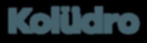 dark blue Koludro logo