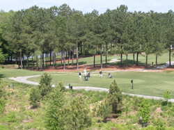 golf course compressed.jpg