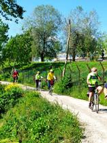 6)Francesca 2 maggio Vecchie e nuove cic