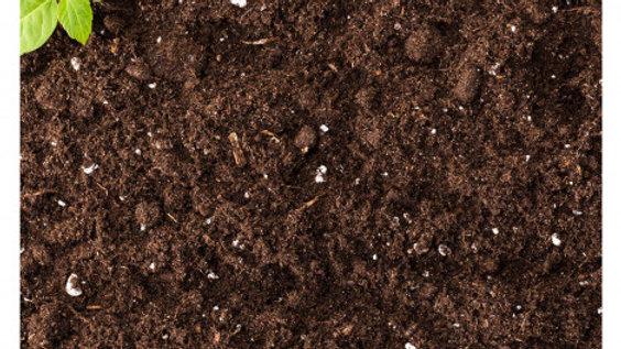 Multi Purpose Compost (Bagged)