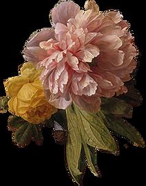 Цветок 1.png