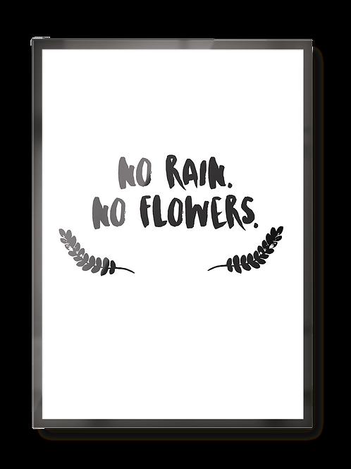"""Poster """"no rain no flowers"""""""