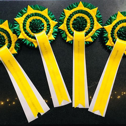 Rosettes in memory of Many Clouds