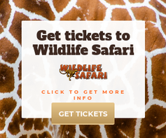 WildlifeSafariBanner-300x250.png