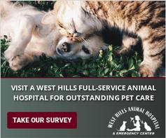 WestHillsAnimalHospitalBanners-300x250.p