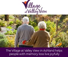 VillageatValleyView-300x250.png