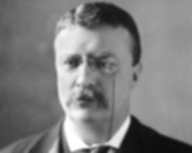 Theodore_Roosevelt_circa_1902.jpg