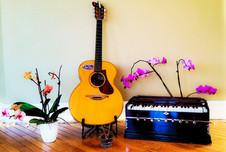 Guitar & Harmonium