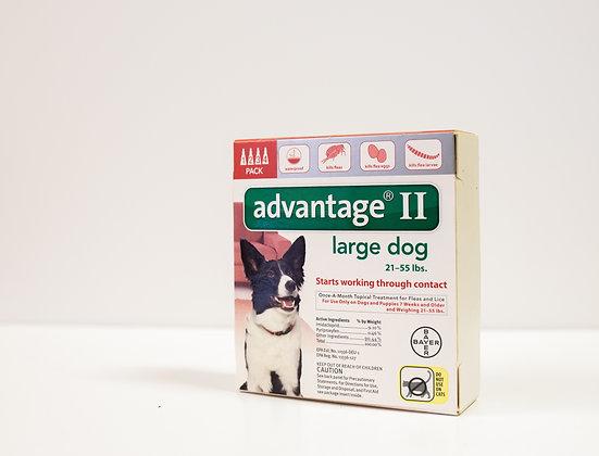 Advantage II, Large Dog
