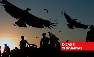 """DIA DO RECICLADOR: """"COLETA SELETIVA SEM CATADOR É LIXO""""."""