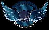 Logo VBCCV.png