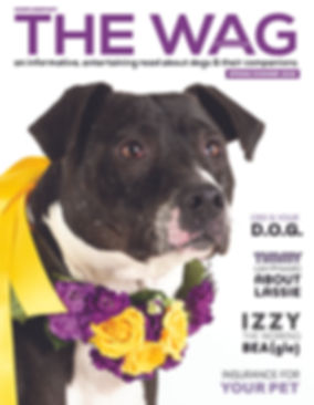 theWAGmagazine_spring2020-cover.jpg