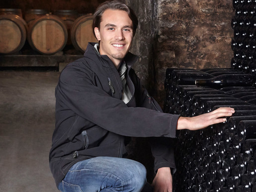 Interview with a Burgundy winemaker