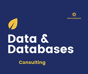 This service is perfect for when you need some data, database, analytics or spreadsheet skills to make your data dynamic and at the heart of your business and business decision making. Charged per hour with a free first-hour discovery call - so that we get it just right for you.