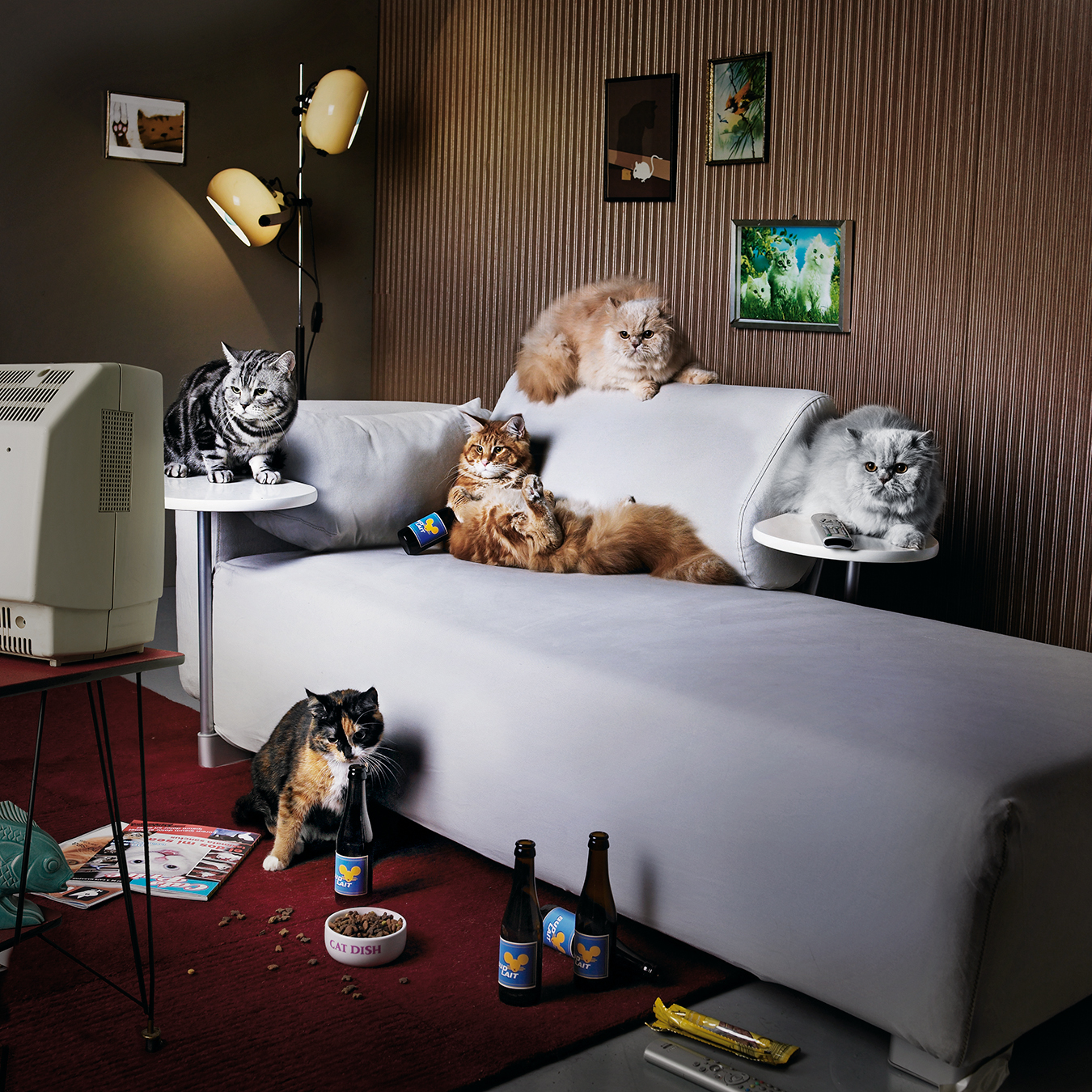 frontline-couchcats_v1-1.jpg