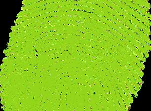 EMPREINTE%2520NATIVE_edited_edited.png