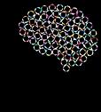 brain-3449629_640.png