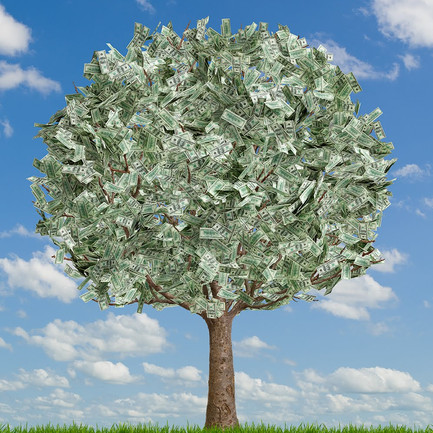The Importance of Cash Flow and Cash Flow Management