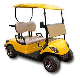 2 seater golf cart