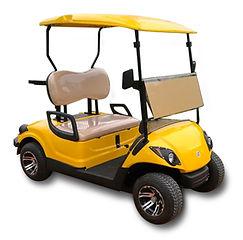 2 Seater petrol golf cart