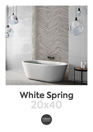 WHITE SPRING_COPERTINA20X40_005.jpg