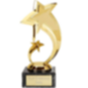 star-trophy-500x500.png