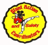 stunt_action.png