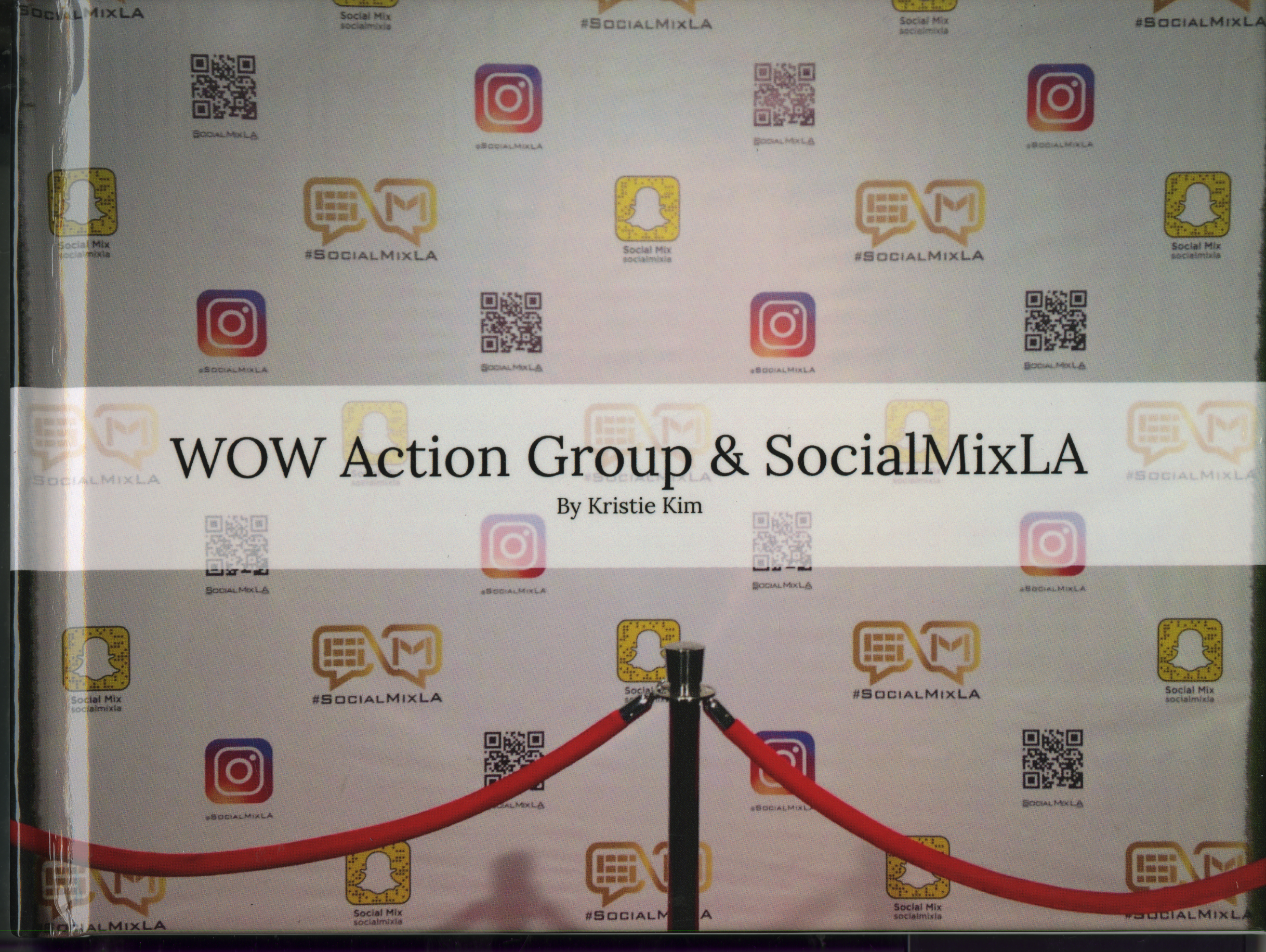 WOW Action Group & SocialMixLA