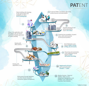 INTELLEXSYS - Company Profile