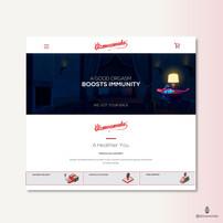 Old - Gizmoswala Website Design