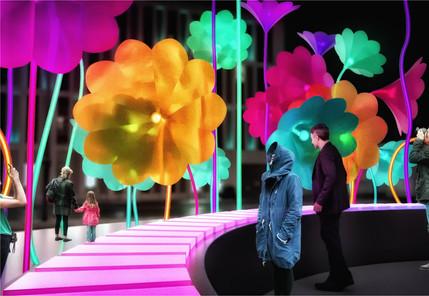 פרחי חצוצרה של אמגיו&אמיגו קרדיט פטיבל ה
