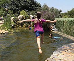 """צילום: מים שקטים בריכות אקולוגיות בע""""מ"""