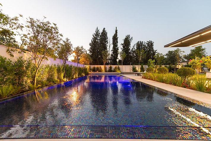 תכנון בריכה חברת פלגים- אדריכל ישראל כפי