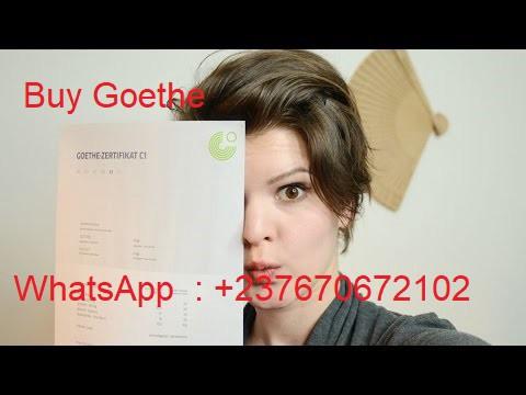 A1 goethe test zertifikat online German exams