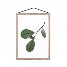 Floating Leaves - Print 5- The Paper Collective