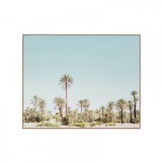 Desert Palms Print On Canvas