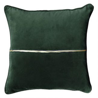 Elwyn Velvet Cushion