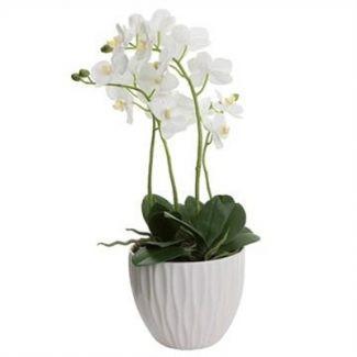 Artificial Orchid in Ceramic Pot- White