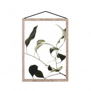 Floating Leaves - Print 9- The Paper Collective