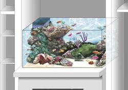 esquisse aquarium 1