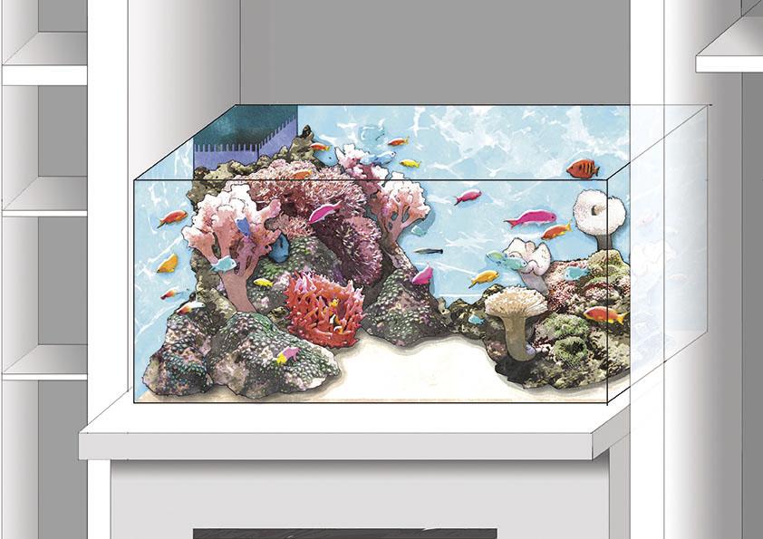 Equisse aquarium 2
