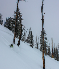 Powder Skiing in the Tetons