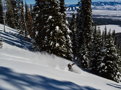 Teton Powder