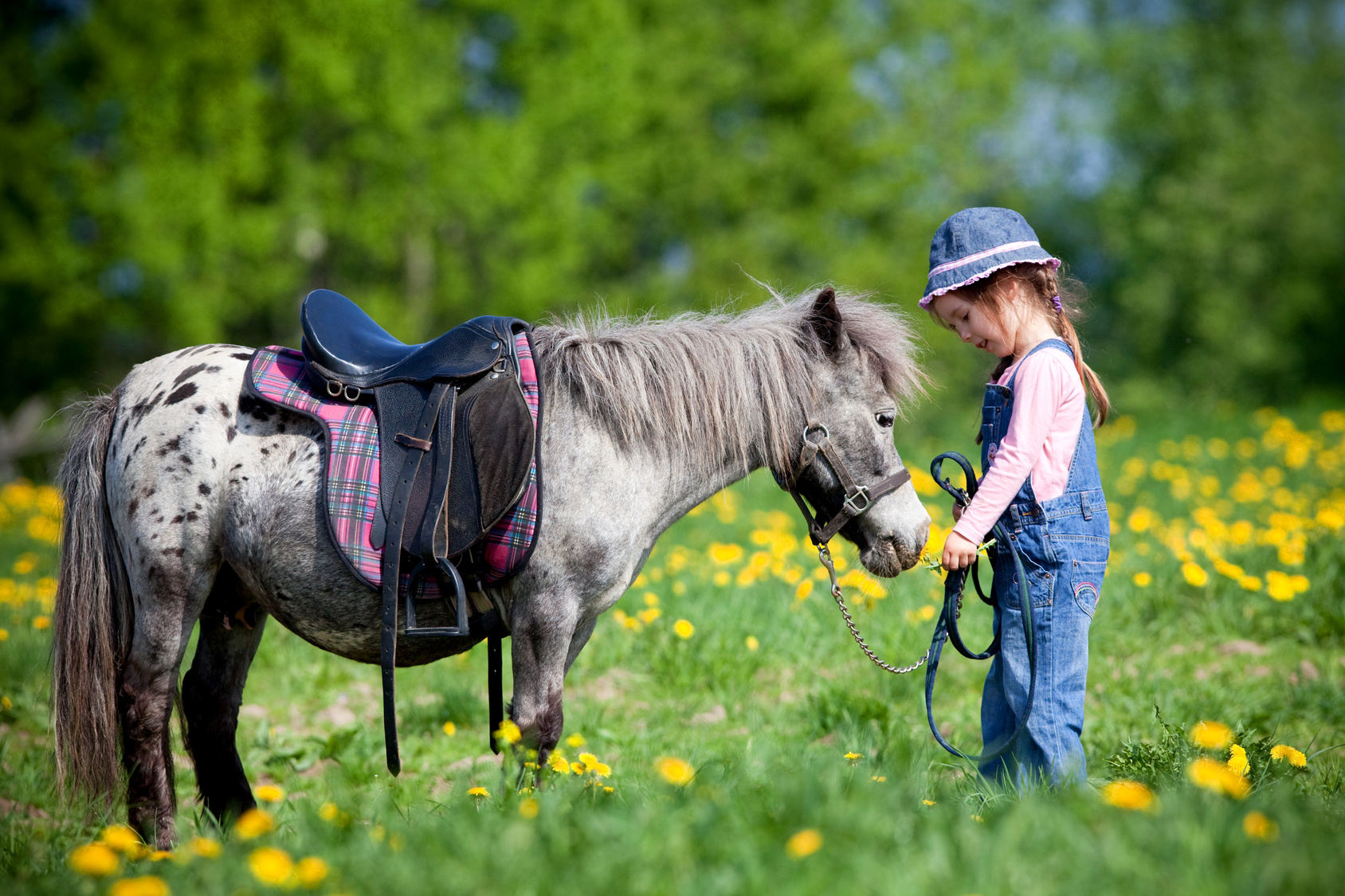 Horse riding for children Tuscany