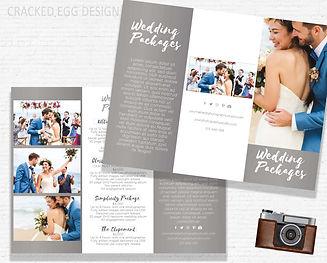 Basic Mockup CAMERA Trifold wed.jpg