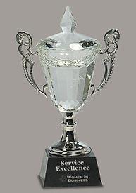 OC251M Championship Crystal Cup Trophy.j